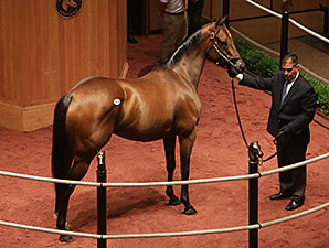 Stonestreet Buys Hillaby for $500,000 at F-T