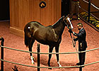 $340,000 Scat Daddy Filly Tops F-T Opener