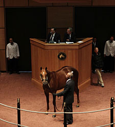F-T Kentucky October Sale Soars at Start