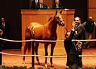 F-T October Sale Gains Across Board at Opener