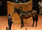 F-T Sells $250,000 Colts; Average Increases