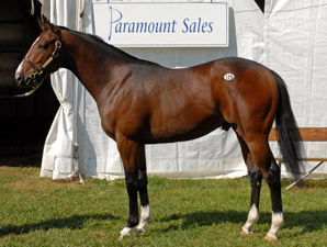 Buy-Back Rate Down at FT Midlantic Sale