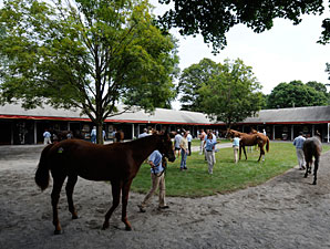 Outlook Uncertain for Saratoga Select Sale