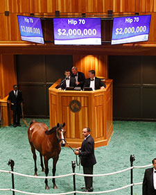 Tapit Strikes Again as Colt Sells for $2M