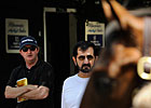 What New York Says About the Yearling Market