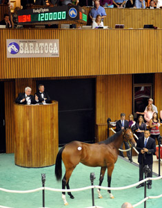 Bernardini Colt Brings $1.2 Million