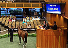 FT NY-Bred Sale - Hip 379 brings $430k