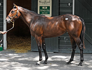 Two More Saratoga Yearlings Sell for $500k+