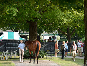 Talkin' F-T Saratoga: Market Expectations