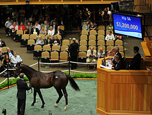 Half Brother to Super Saver Brings $1.2 M