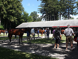 F-T Saratoga: Session I Hot Horses (Updated)