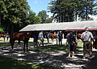 F-T Saratoga: Session I Hot Horses (Updated)