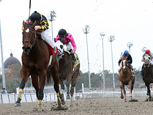 Fair Grounds Offers More Stakes Days, Wagers