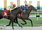 Java's War, Falling Sky in Derby Prep Works