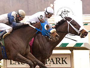 Fancy Diamond wins the 2009 Conniver Stakes.