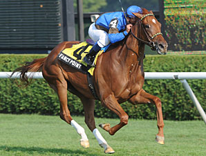 Fancy Point wins the 2010 P. G. Johnson Stakes.