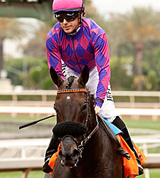 Fanticola wins the 2015 Royal Heroine Stakes.