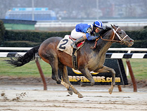 Farhaan wins the 2013 Lord of the Night Stakes.