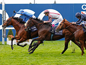 Farhh Wins Champion Stakes Thriller at Ascot