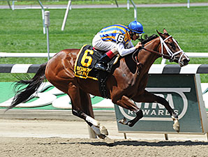 Fashion Alert wins the 2014 Astoria Stakes.