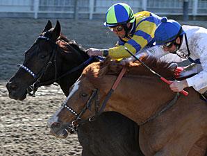 Fast Alex wins the 2011 Tenacious Handicap.