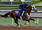 Baffert Impressed with Fast Anna's Drill