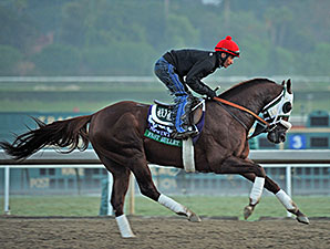 Fast Bullet works towards the Breeders' Cup.