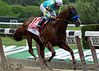 Fast Bullet Retired, to Stand at Pauls Mill