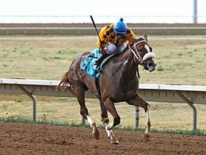 Fast Puff wins the 2013 CTBA Lassie Stakes.