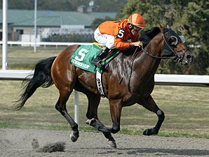 A Speeding 'Bullet' Wins KY Cup Sprint