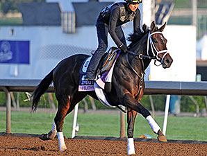 Feathered - Breeders' Cup 2014
