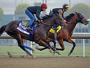 Fed Biz Shows Speed in Breeders' Cup Workout