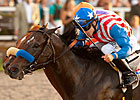 Baffert Takes Four Shots in San Fernando