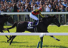 Fenomeno Shows Staying Power in Tenno Sho