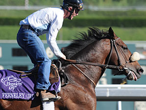 Ferneley at the 2009 Breeders' Cup