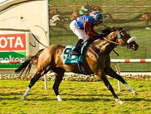 Ferneley Paints Masterpiece in Del Mar Mile