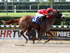 Field Commission wins 2012 Ponche Handicap.