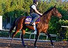 F&M Turf Euros Get First Look at Santa Anita