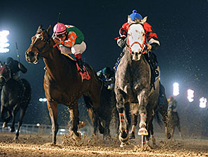 Fifty Acres wins the 2014 LA-Bred Premier Night Ragin Cajun Starter.