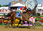 Fiftyshadesofhay Prevails in Black-Eyed Susan