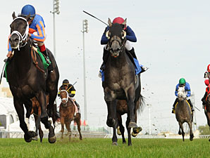 Finale wins the 2011 Summer Stakes.