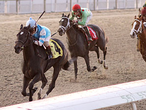 Finding More wins the Letellier Memorial Overnight Stakes.