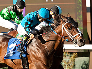Finnegans Wake wins the 2014 Hollywood Turf Cup.