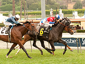 Fire With Fire wins the 2014 Charles Whittingham.