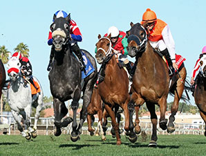 Fire With Fire wins the 2014 Cotton Fitzsimmons Mile
