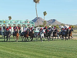 Fire With Fire wins the 2014 Cotton Fitzsimmons Mile.
