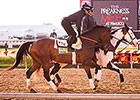 Callaghan Looking to Turn Preakness Tables