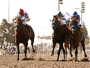 Baffert's 'Dudes' Abide in 1-2 Gold Cup Show