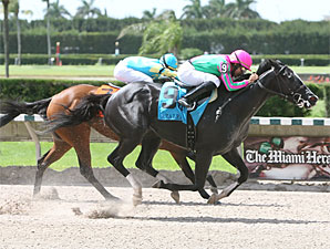 First Passage wins the 2009 Azalea.