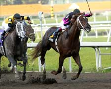 Kentucky Derby Trail:  Fountain Blues